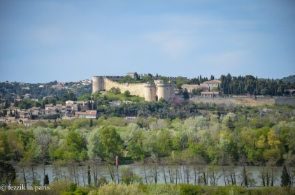 The medieval Fort Saint-André. We'll very likely visit (and go to the abbey behind said fort) should we return to the region.