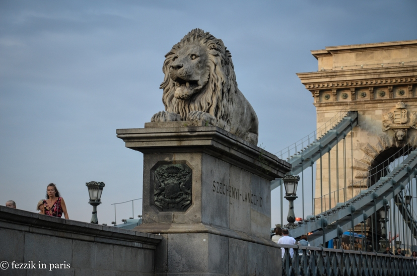 Derpy lions (per urban legend (read: not actually), tongueless) stand guard on each corner of the Chain Bridge.