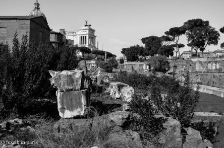 The Roman Forum.