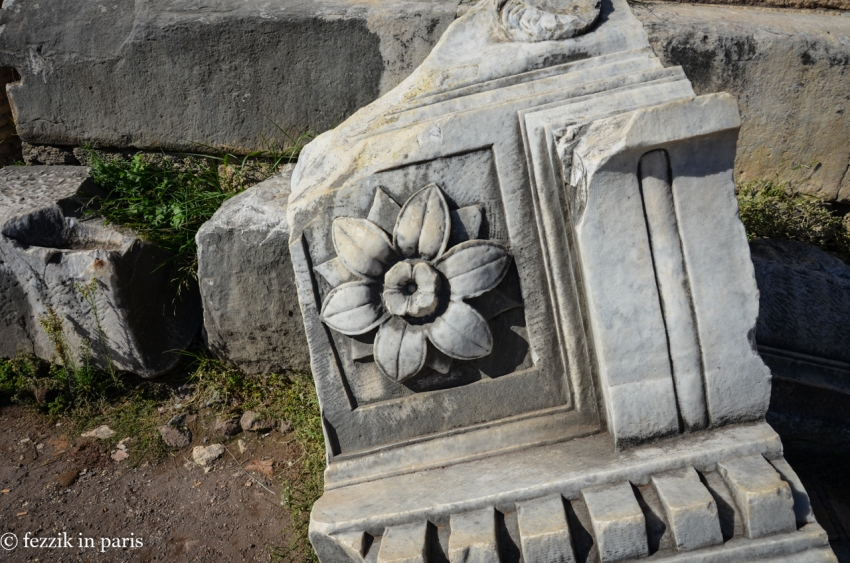 A pretty flower on a broken piece of marble.