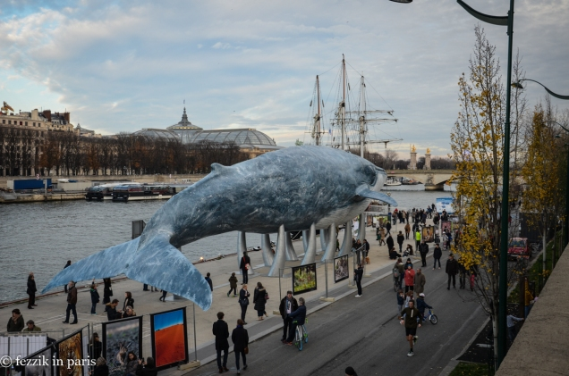 Per the accompanying signs, this is a 1:1 replica of a whale that was poked to death with sharpened sticks whaled at the turn of the 20th century; as it turns out, it is (was, really, being dead and all) the largest on record.