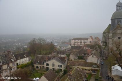 Moss and fog.