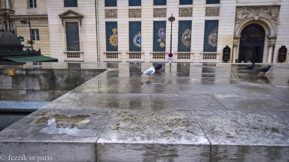 Go home seagull, you're drunk (and not a pigeon).