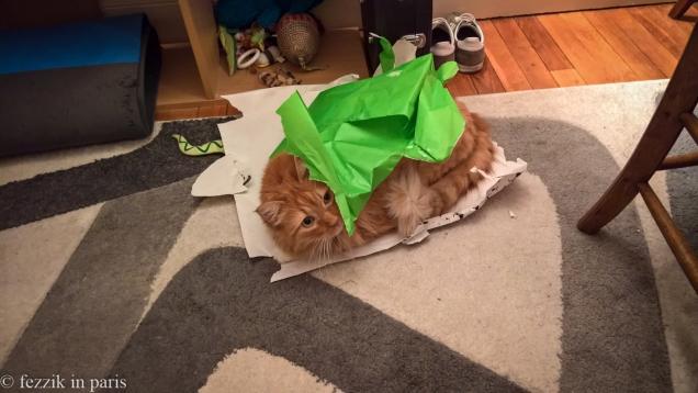 Vorenus enjoyed the gift-opening activities.