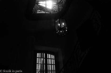 gallery-DSC_8713
