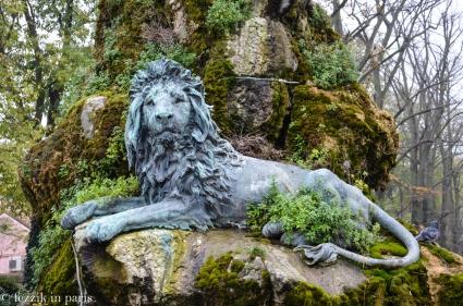Such a noble lion.